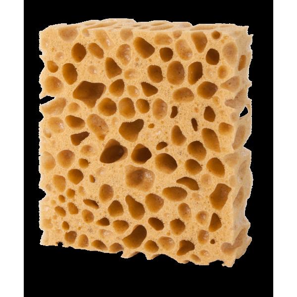 Pedag Sponge